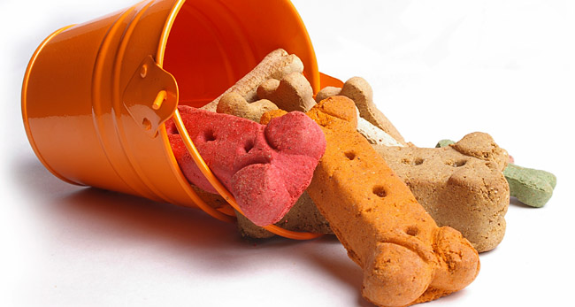 Dog Treats & Food